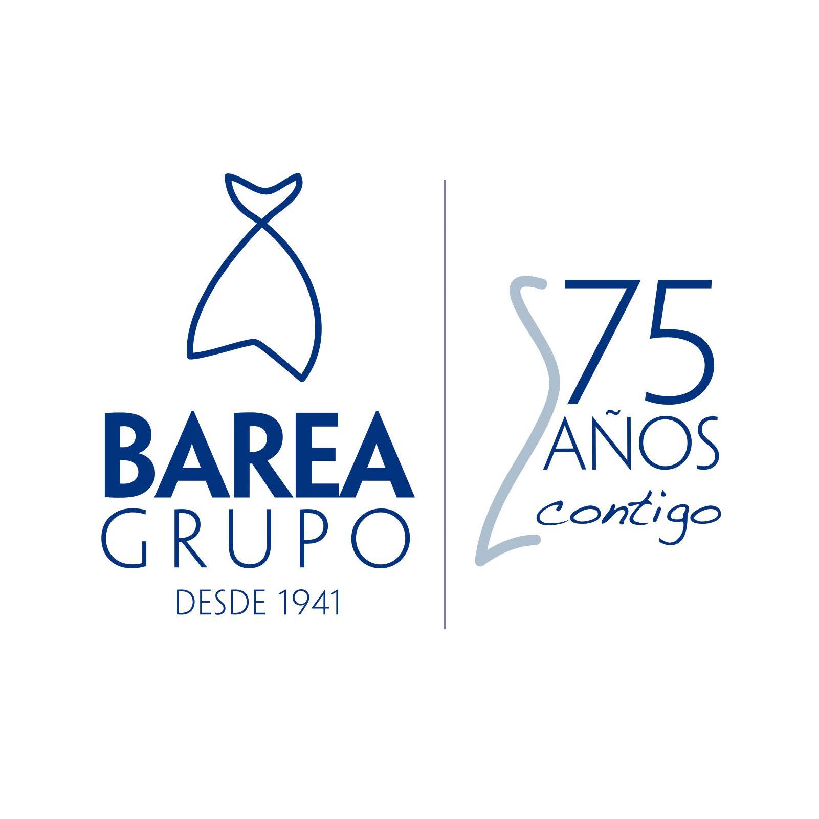 barea_grupo_75_aniversario_marca_logotipo_textura_design